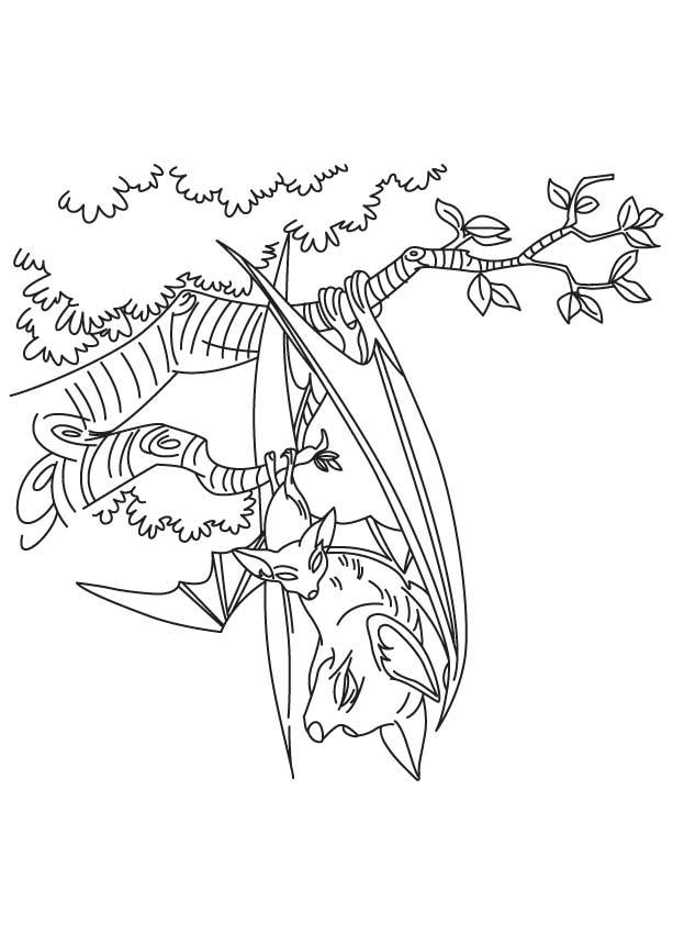 Bat hanging on tree coloring page