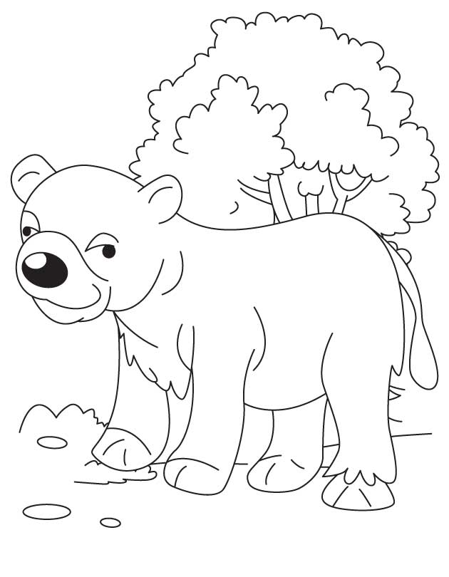 Bear cub in jungle coloring page for Bear cub coloring pages
