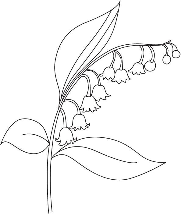 Beautiful Bellflower Coloring Page Download Free