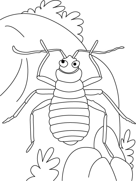 Bed bug recite, all earth mine coloring pages