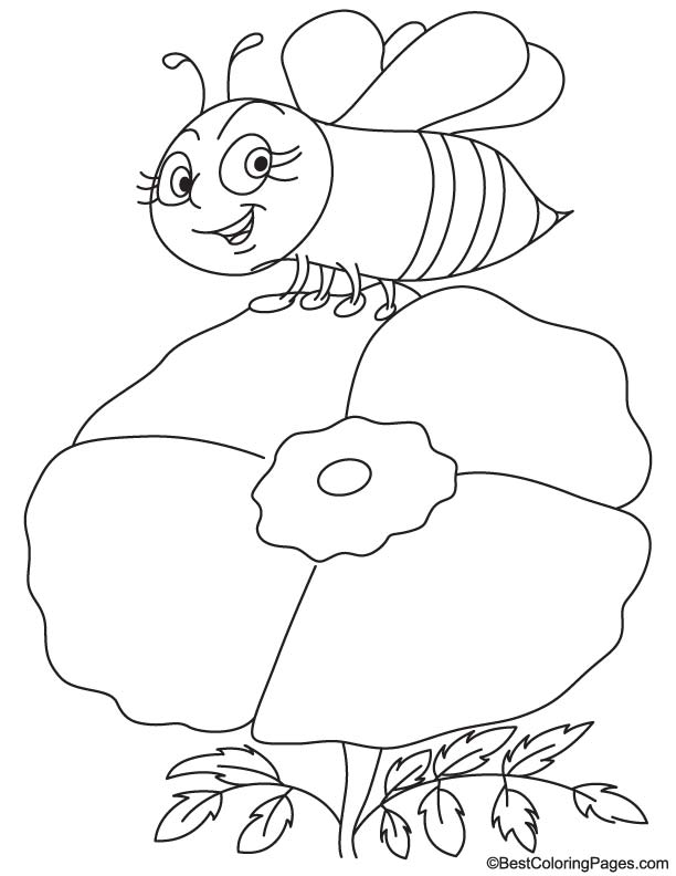 Bee on poppy coloring page