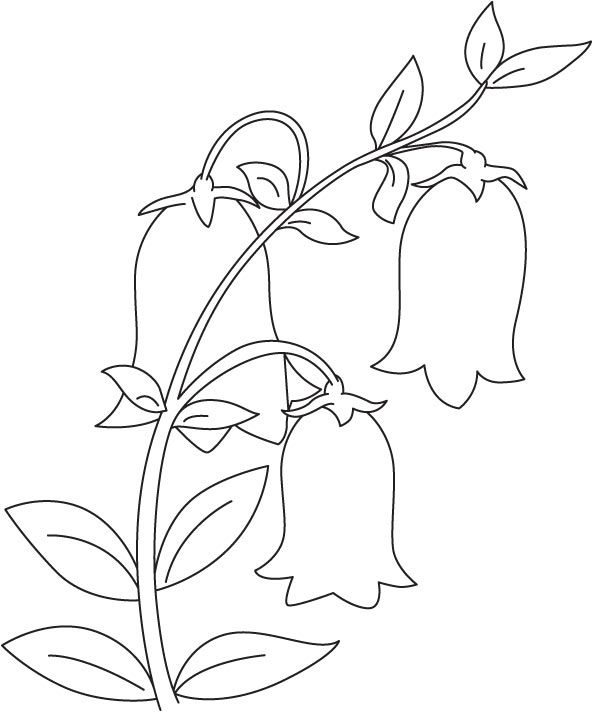 Bell in garden coloring page