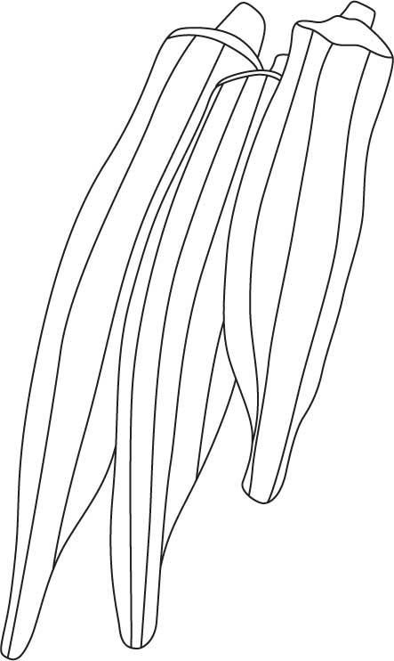 Bhindi coloring page | Download Free Bhindi coloring page ...