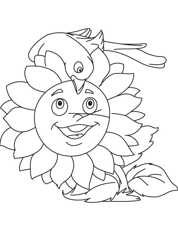 Bird and sunflower coloring page