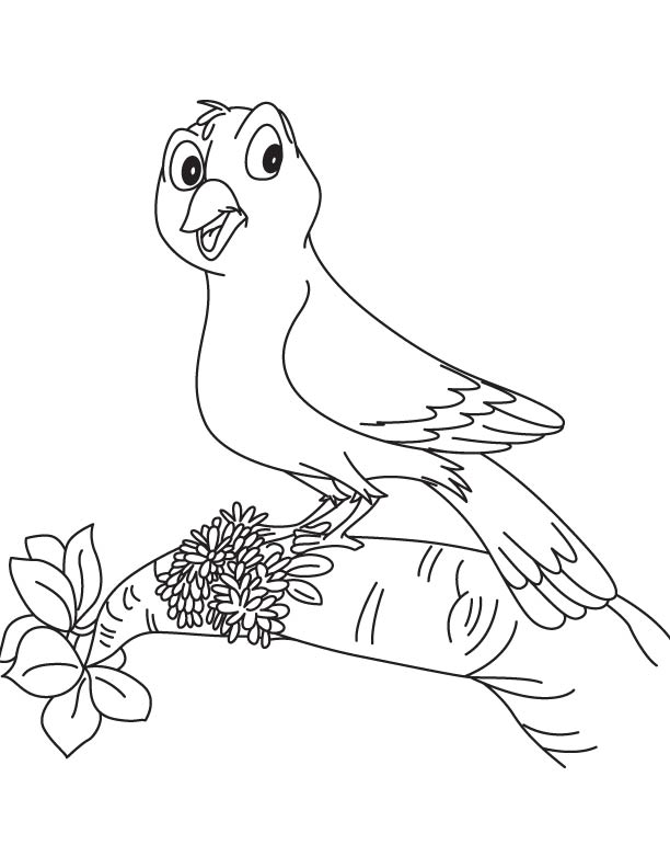 Bird with goldenrod coloring page