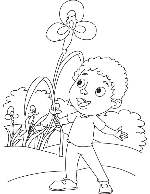 Boy Holding Blue Iris Flower Page
