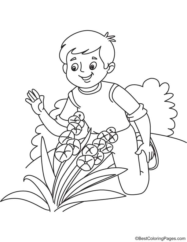 taking care flower coloring pages - photo#2