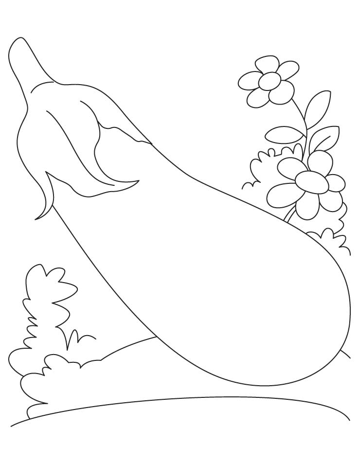 Eggplant With Flower Coloring Pages