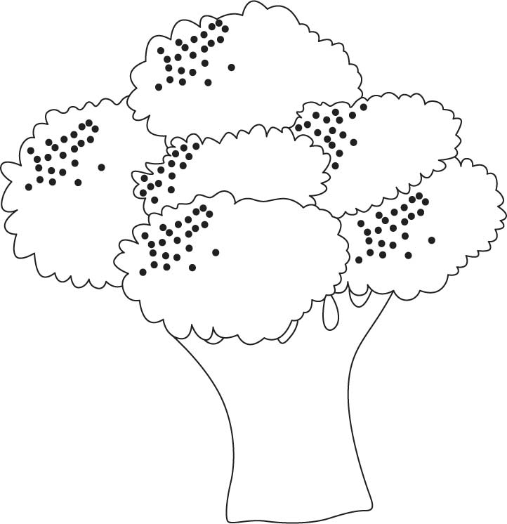 Growing broccoli coloring pages