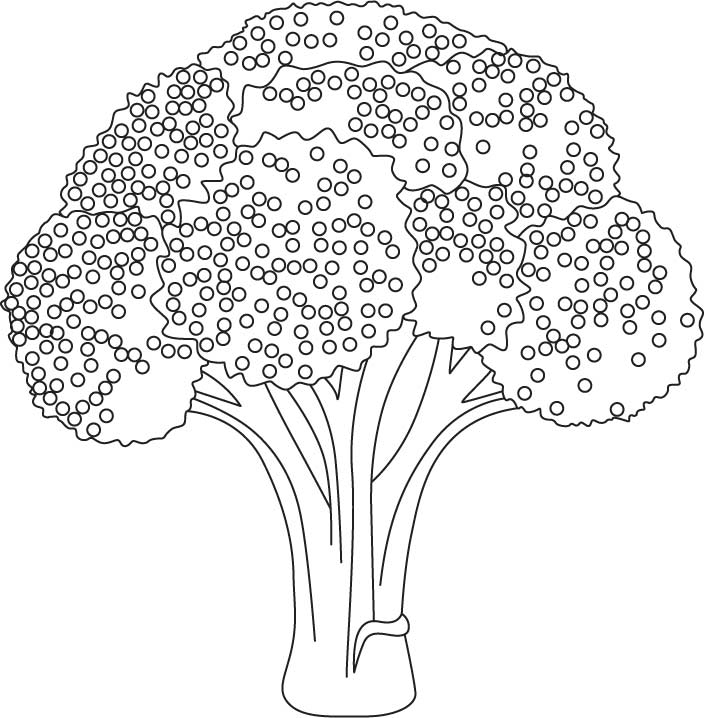 Broccolo coloring pages