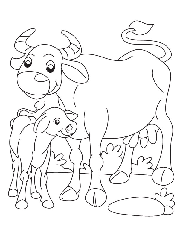 Buffalo and Calf coloring page