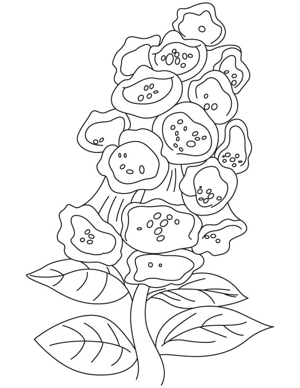 Bunch of bellflower coloring page