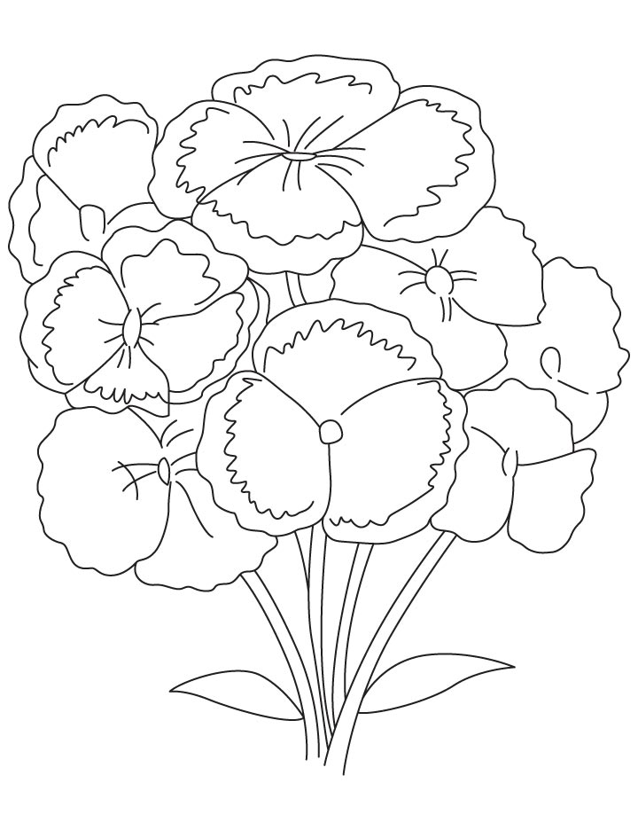 Bunch of carnation coloring page