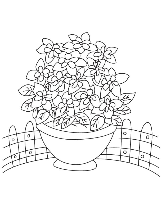 Bunch Of Columbine Coloring Page