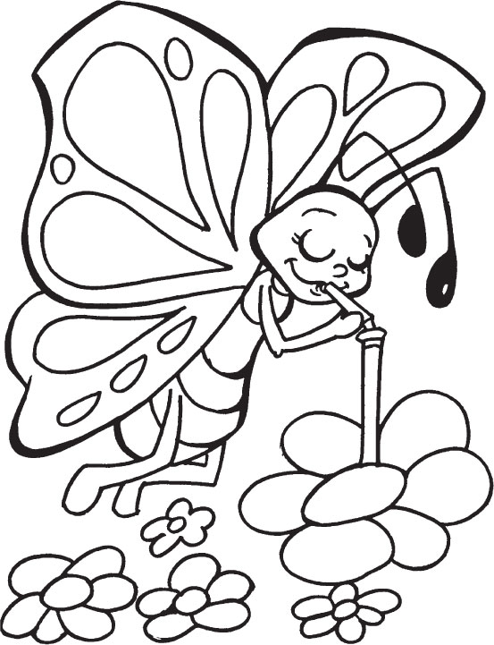 Butterfly Sipping Nectar Coloring Pages Download Free Butterfly Butterfly Coloring Pages