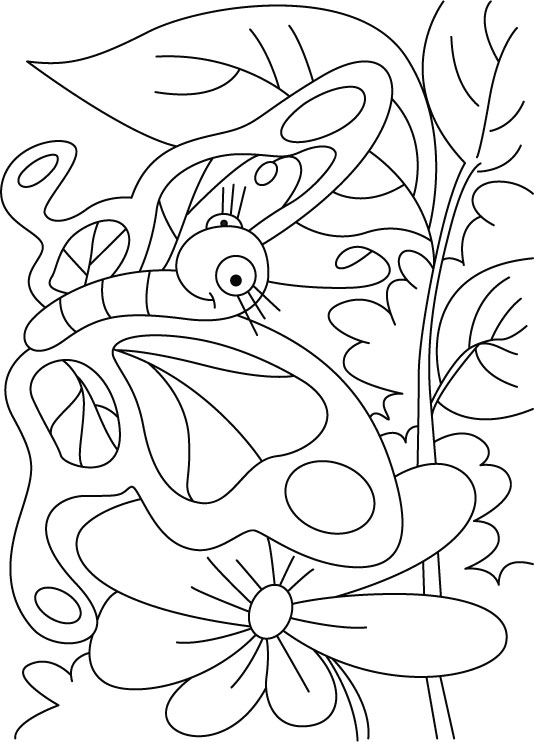 Leave or flower-butterfly is everywhere coloring pages | Download ...