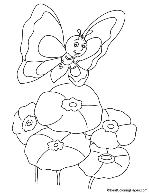 Butterfly on poppy coloring page