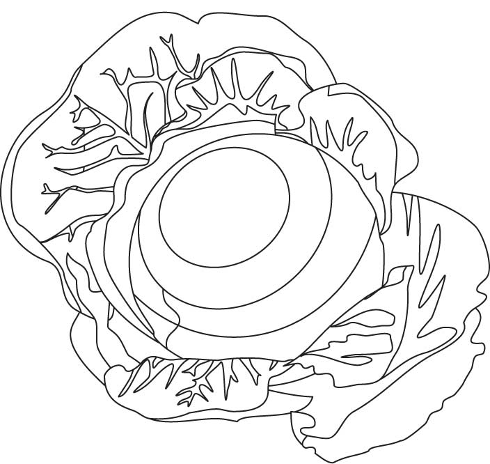 cabbage patch coloring pages - photo#31