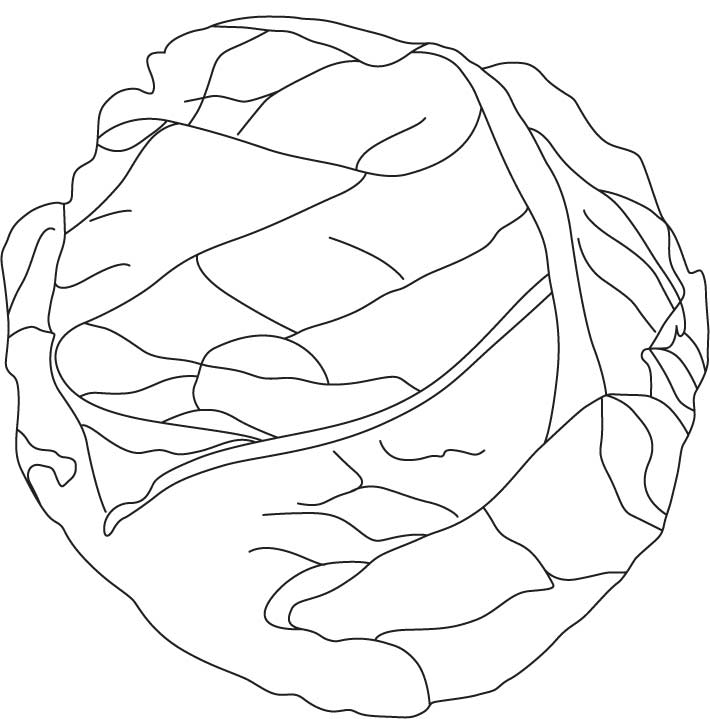 cabbage patch coloring pages - photo#47