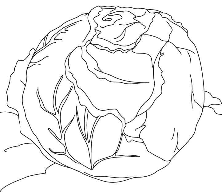 cabbage patch coloring pages - photo#50
