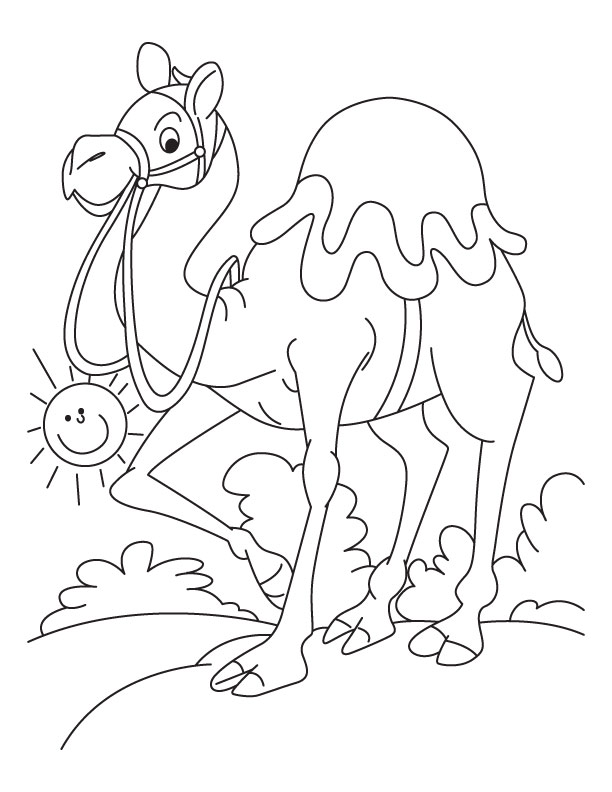 Sally the camel coloring page 5 coloring pages for Camel coloring page