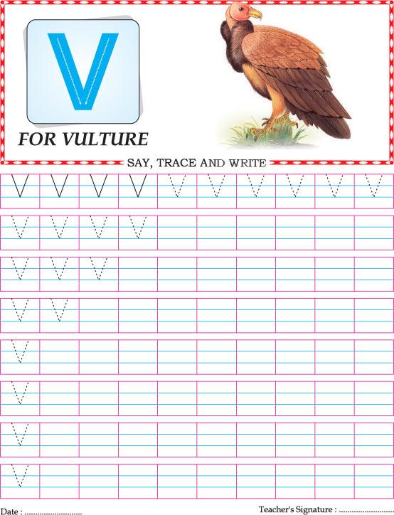 Capital Letter V Practice Worksheet: V Is For Vulture Worksheet At Alzheimers-prions.com