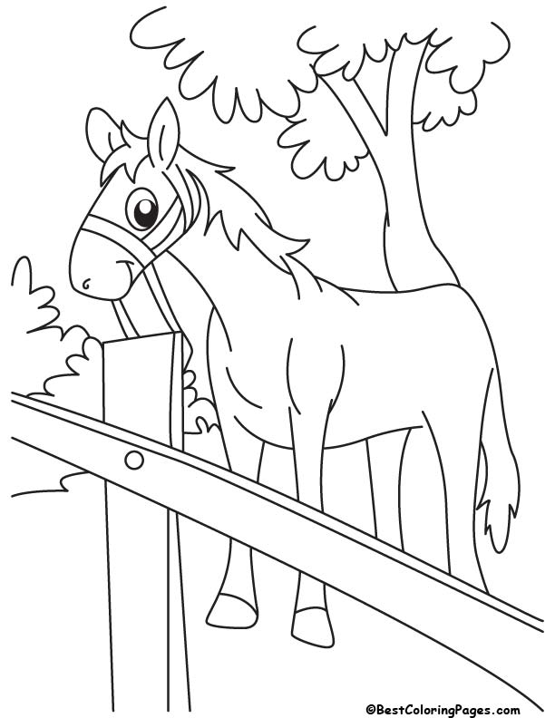 Cartoon horse coloring page