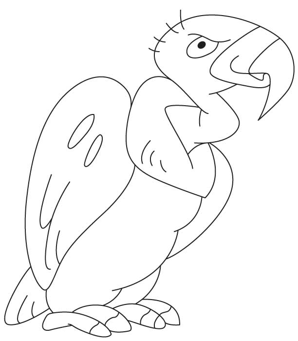 Cartoon Vulture Coloring Page Download Free Cartoon Vulture Coloring Page