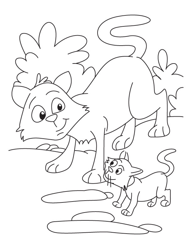 Cat and Kitten coloring page | Download Free Cat and Kitten coloring ...