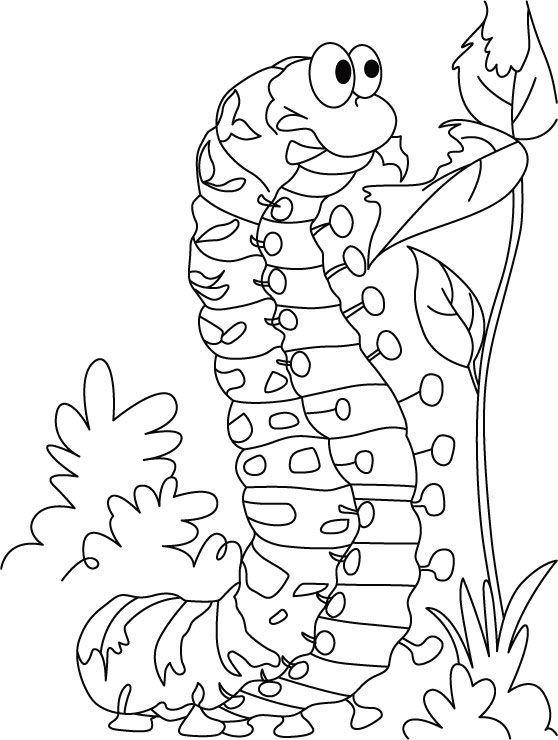 Caterpillar Satisfying Hunger Coloring Pages