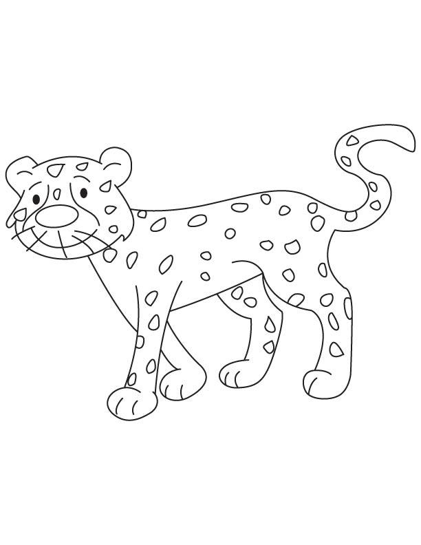cheetah cub at walking coloring page