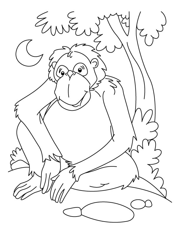 Chimpanzee waiting coloring page Download Free Chimpanzee
