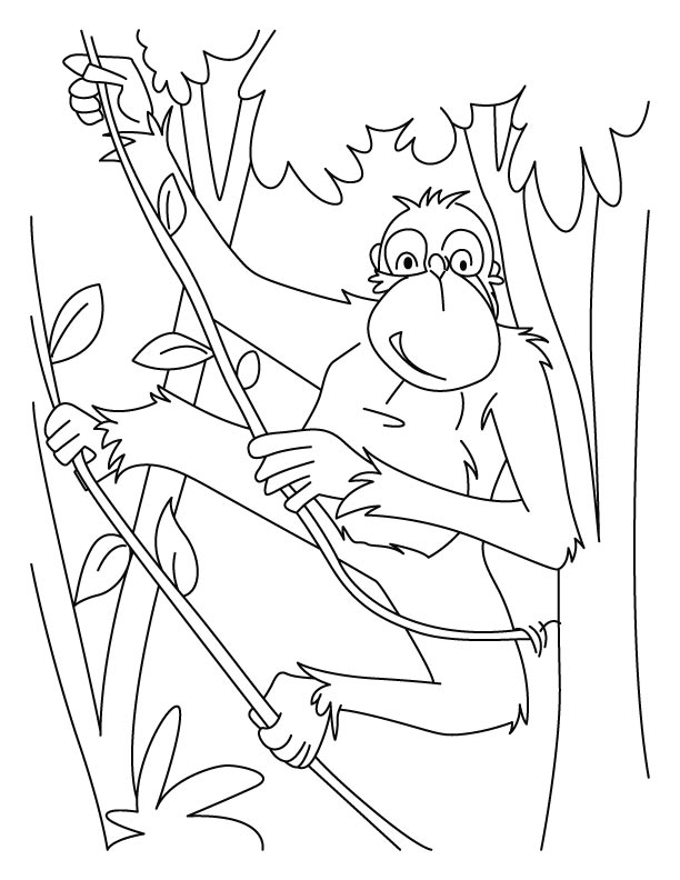 Chimpanzees rope ladder coloring pages Download Free Chimpanzees