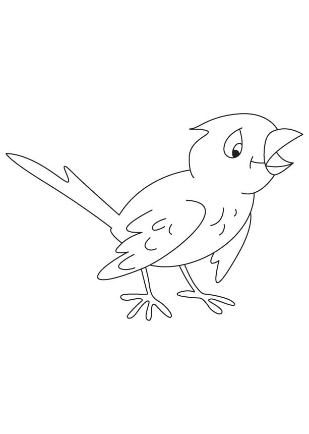 Chirp chirp coloring page