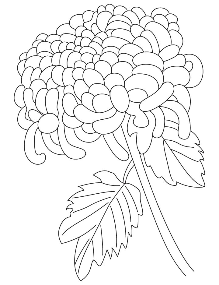 kevin henkes chrysanthemum coloring pages - photo#4
