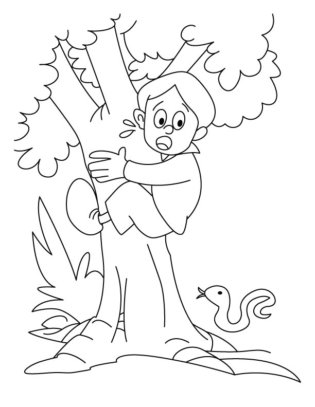 A Boy Is Climbing On The Tree Coloring Pages