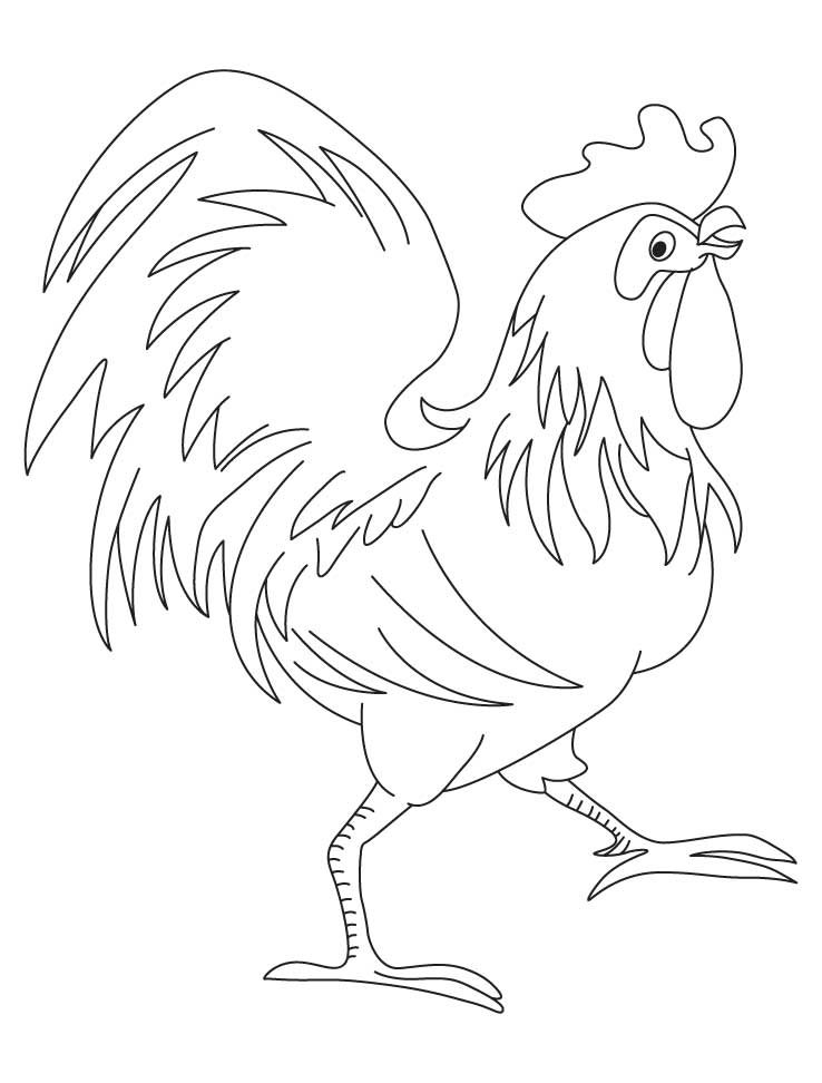 Rooster Chinese zodiac sign coloring