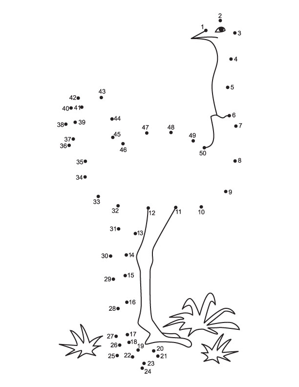 Dot To Dot 1 50 Worksheets : Connect the dots ostrich from to download free