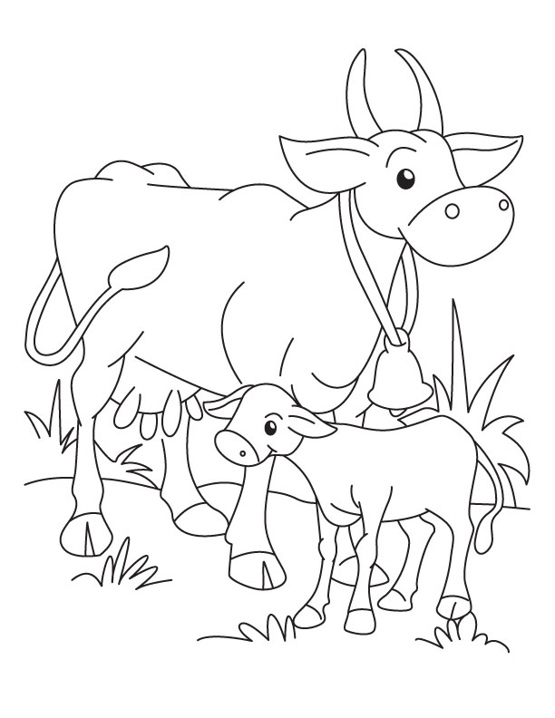 Cow and Calf coloring page Download