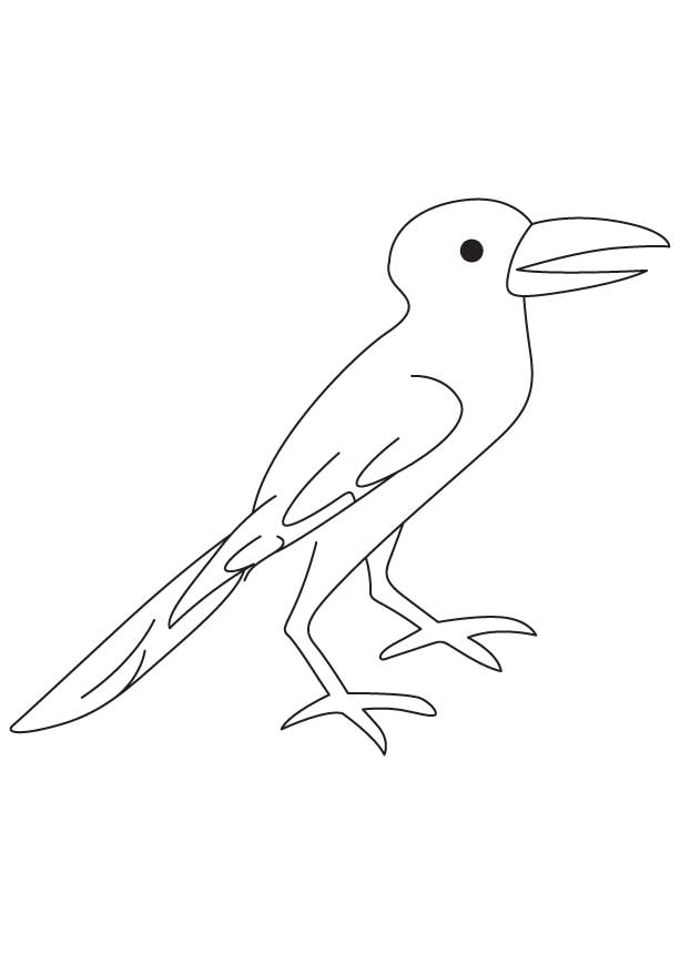 Crow coloring sheet