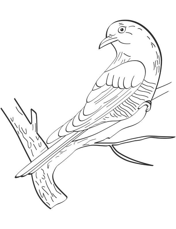 Cuckoo Looking Backward Coloring Page