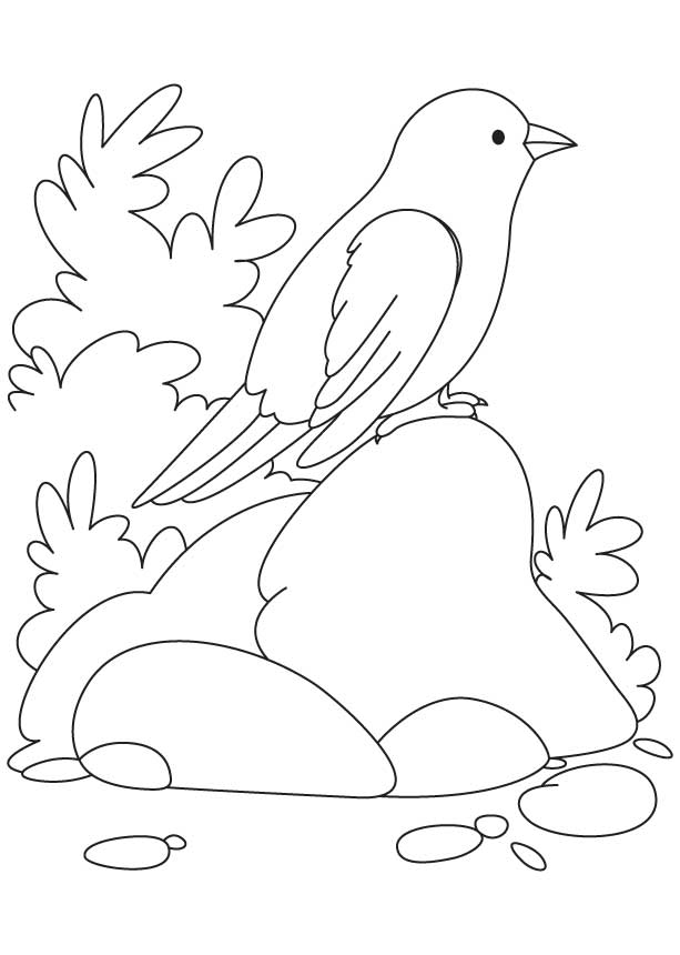curious george coloring pages photosynthesis - photo#12