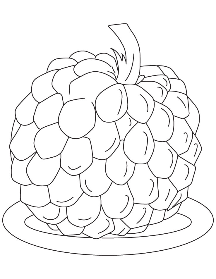Sugar apple coloring pages | Download Free Sugar apple ...
