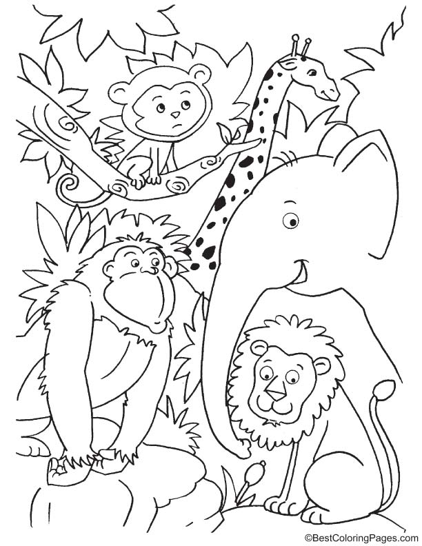 Cute animals in jungle coloring page