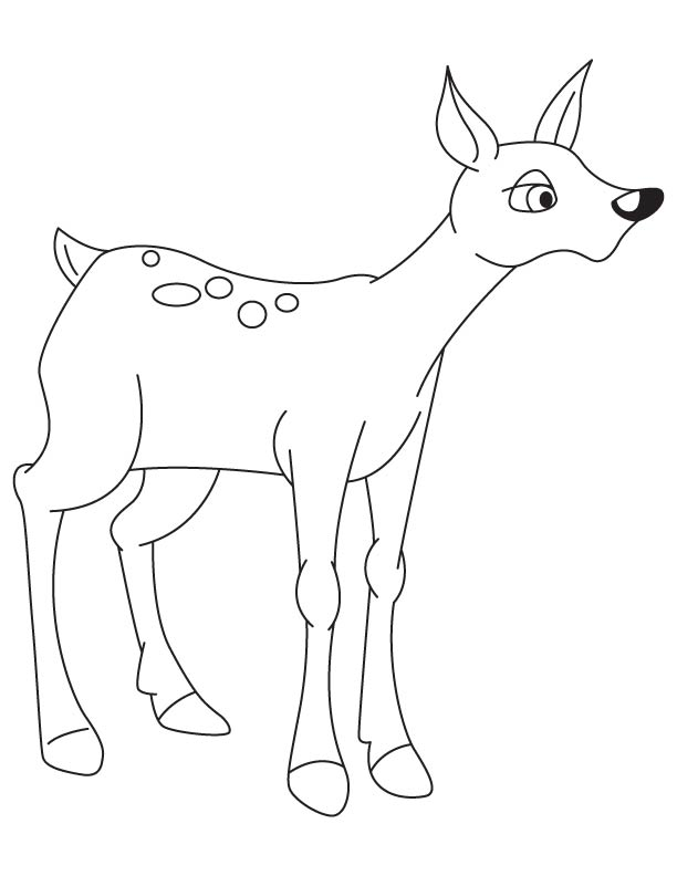 Cute fawn coloring page