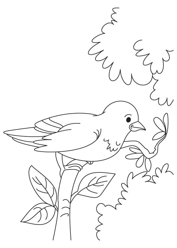 Little sparrow coloring page