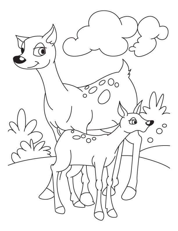Fawn with deer coloring pages