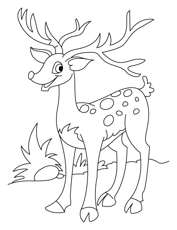 Happy Deer Coloring Page