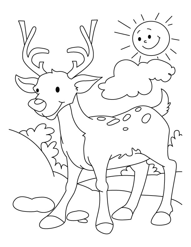 my deer coloring page download free my deer coloring page for rh bestcoloringpages com coloring pages for kids december 2017 coloring pages for kids december