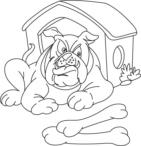 rib cage coloring pages